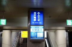 DSC_7549.jpg