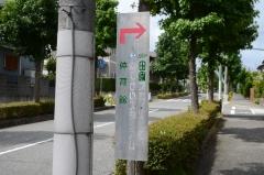 DSC_7570.jpg