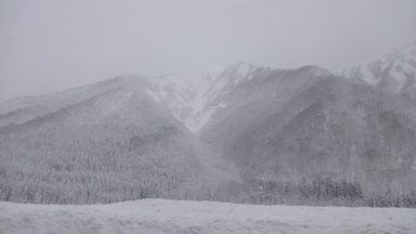 ゆき!ユキ!雪!