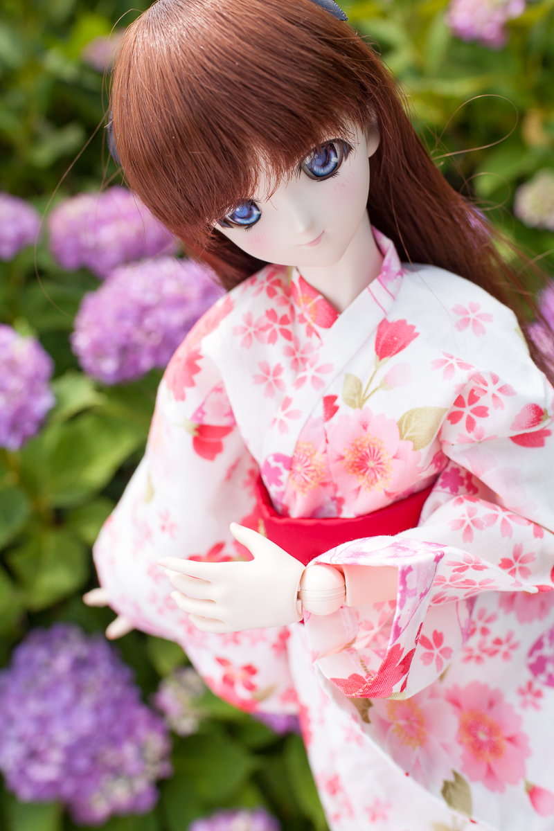 yasatsu_20140621-01.jpg