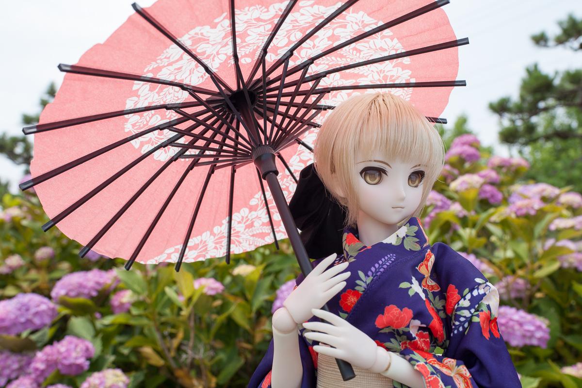 yasatsu_20140621-05a.jpg