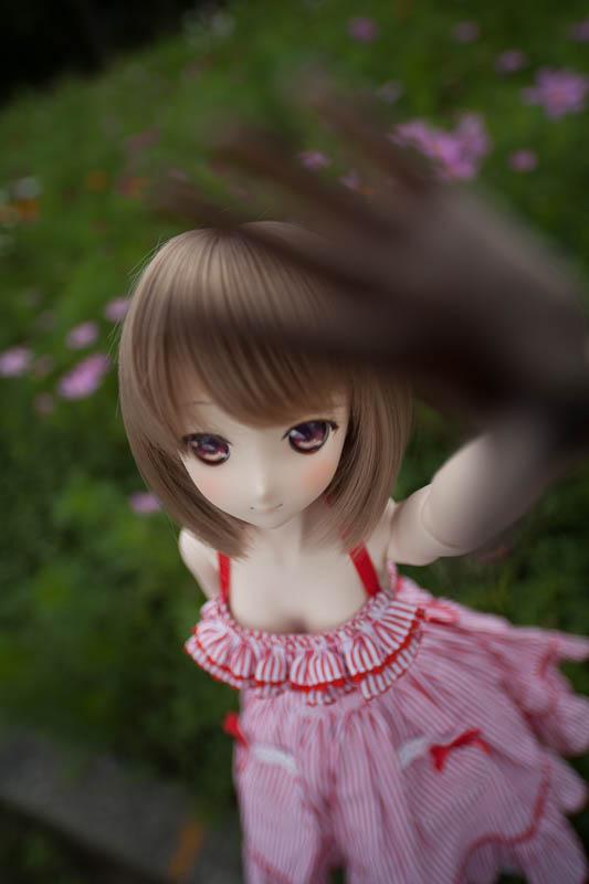 yasatsu_20140828-03.jpg