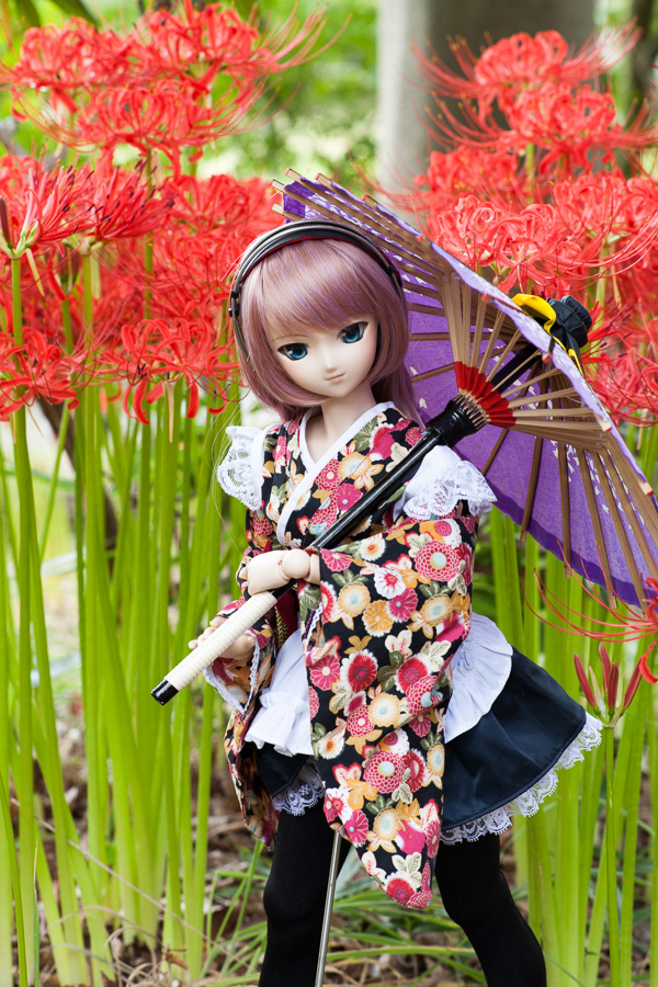 yasatsu_20140923-02.jpg