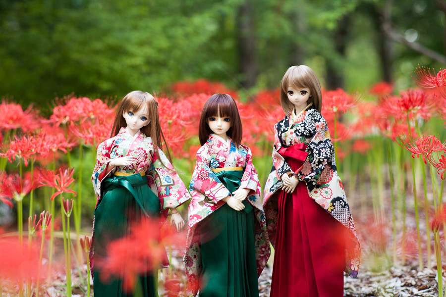 yasatsu_20140923-04.jpg