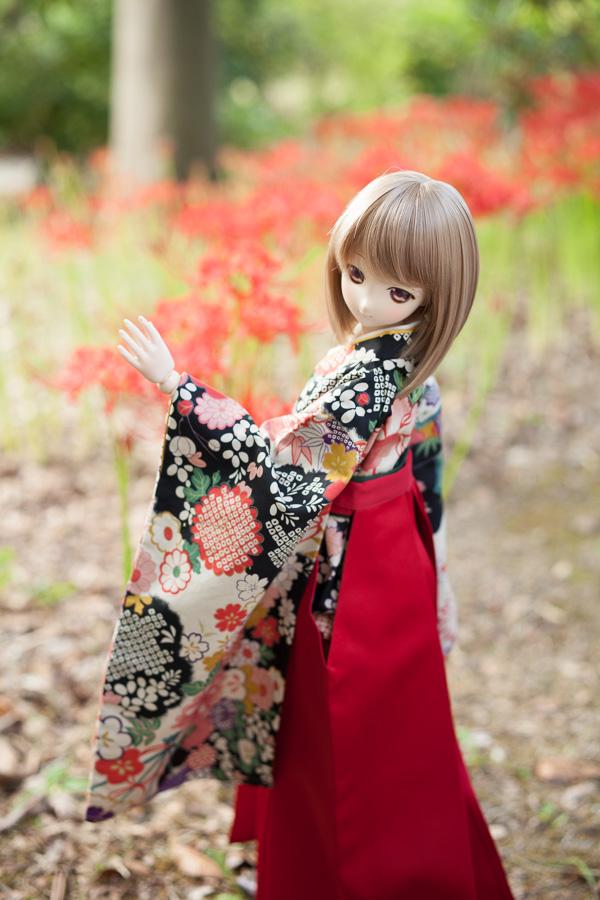 yasatsu_20140923-05.jpg