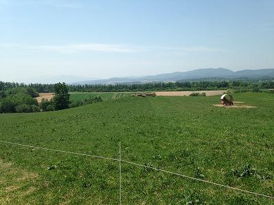 牧場からの眺め2