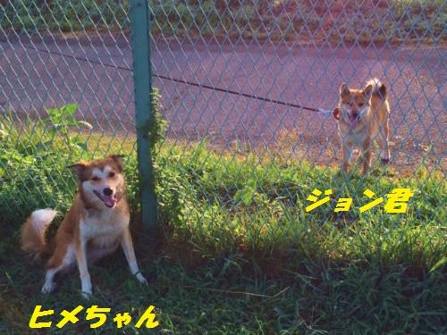 1_201408.jpg
