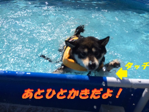 Blog107.jpg