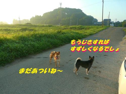 BlogP1550257_2.jpg