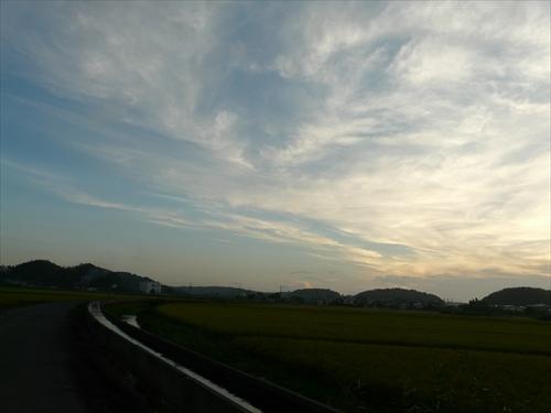 P1540964_R.jpg