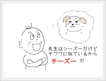 ti-zu-1.jpg