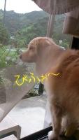 2014-07-30-10-19-40_deco.jpg