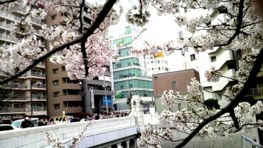 目黒駅界隈-16