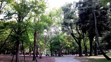 蘆花恒春園1-05