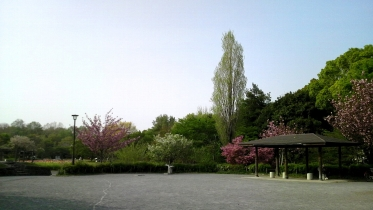 蘆花恒春園1-07