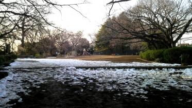 東急多摩川1-41