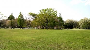 武蔵野の森公園-03