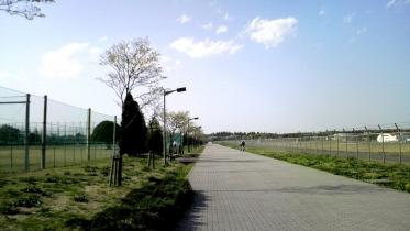 武蔵野の森公園-19