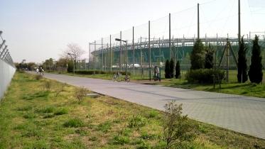 武蔵野の森公園-23