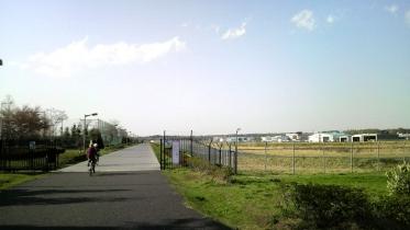 武蔵野の森公園-25