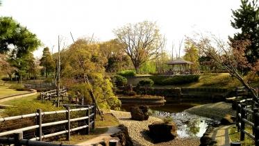 武蔵野の森公園-30