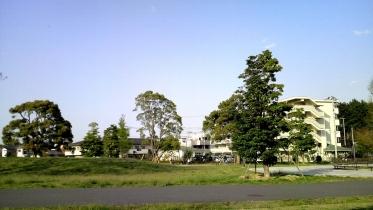 武蔵野の森公園-33
