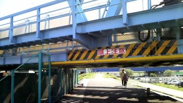 多摩川六郷土手2-09