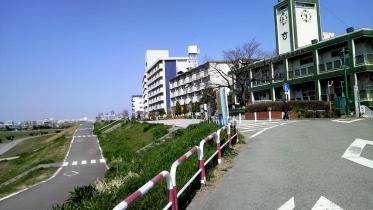 多摩川六郷土手2-19