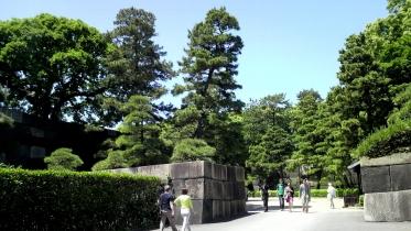 皇居東御苑01-08
