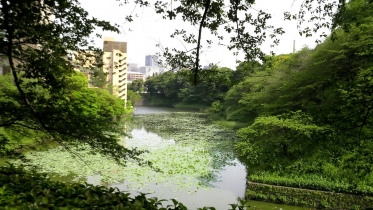 北の丸公園01-03