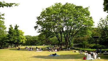 北の丸公園01-11