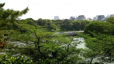 北の丸公園01-20