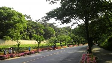 北の丸公園01-44
