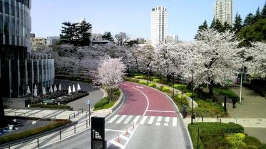 東京ミッドタウン周辺-10