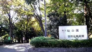 砧公園大蔵01-01