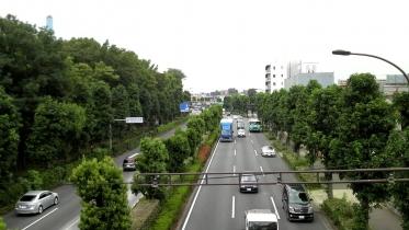 砧公園大蔵01-04