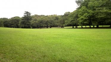 砧公園大蔵01-06