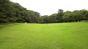 砧公園大蔵01-09