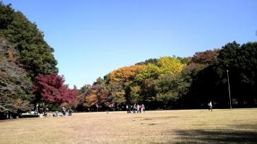 砧公園大蔵01-10