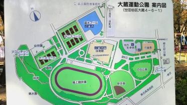 砧公園大蔵01-18
