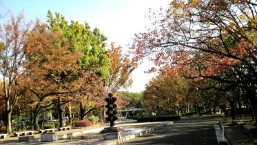 砧公園大蔵01-22