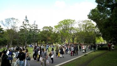 代々木公園周辺01-19