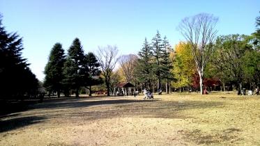 代々木公園周辺01-29