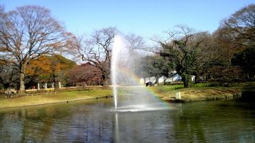 代々木公園周辺02-03