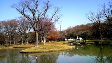 代々木公園周辺02-04