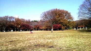 代々木公園周辺02-06