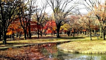 代々木公園周辺02-10