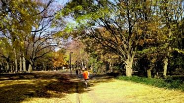 代々木公園周辺02-16