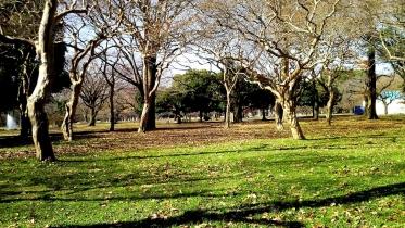 代々木公園周辺02-18