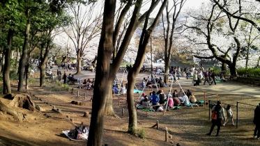 井の頭公園01-28